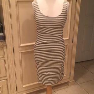 Bailey 44 Spandex dress